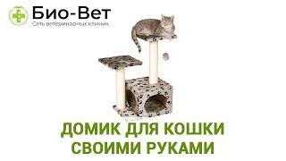 Домик Для Кошки Своими Руками & Виды Домиков Для Кошек. Ветклиника Био-Вет