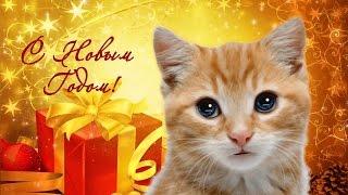 Поздравление С Новым Годом от котенка #5