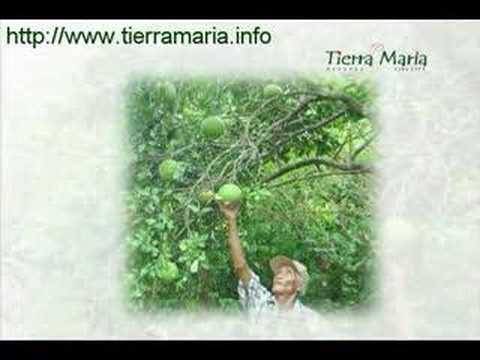 Tierra Maria Farm Estates Promotional Video
