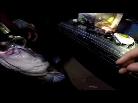 Hideaway Lake Late Night Catfishing