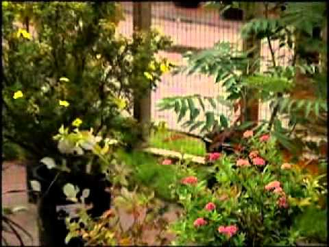 Autumn Gardening Tips - University of Wyoming Cooperative Extension Service
