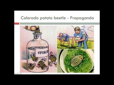 Lecture 22: Insecticide Resistance