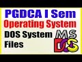 06 PGDCA I Sem Operating System DOS System Files | What is DOS Files