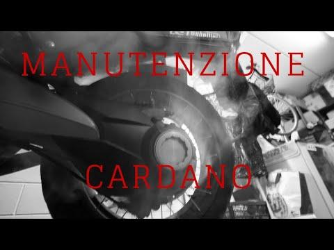 Manutenzione Cardano - Honda Crosstourer 2