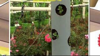 Вертикальная грядка(Если на вашем садовом участке мало места, а посадить хочется всего и побольше, сделайте вертикальную грядку..., 2015-06-03T09:30:00.000Z)