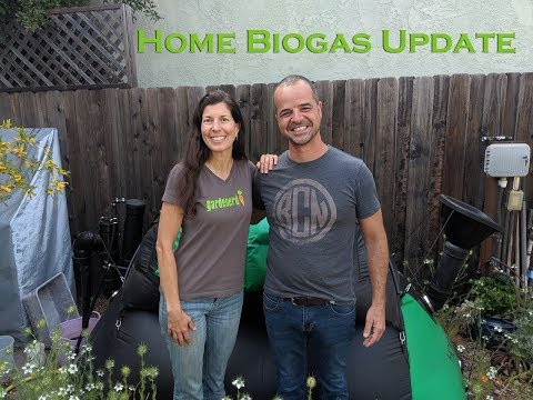 Home BioGas Update & Cooking on Biogas