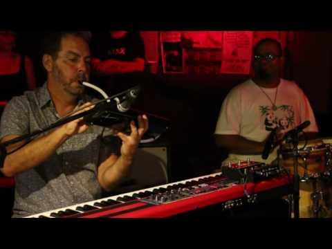 Duke Levine  w/ Club d'Elf - Don't Interrupt The Sorrow