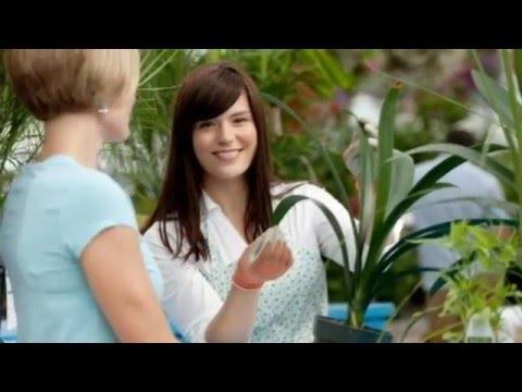 5 растений, которые должны быть в каждом доме