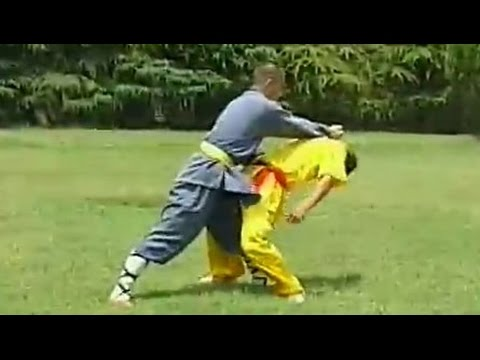 Shaolin kung fu combat: 36 methods