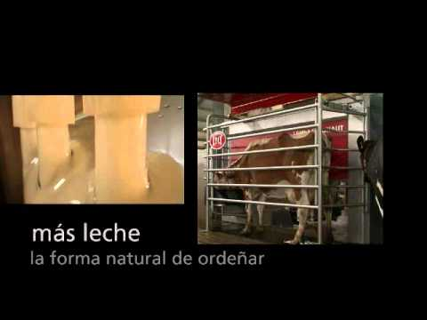 Lely Astronaut A4 - Product video (Spanish)