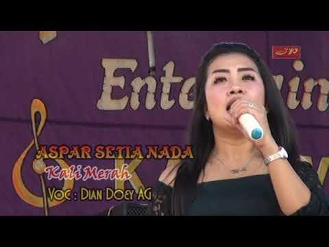 Aspar Setia Nada / KALI MERAH / Dian Doey