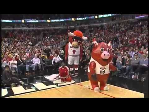 Chicago Bulls Luvabull Cheerleader Surprised With Marriage Proposal