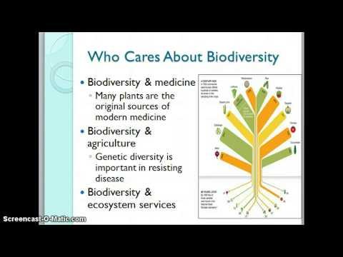 Biodiversity - new & improved