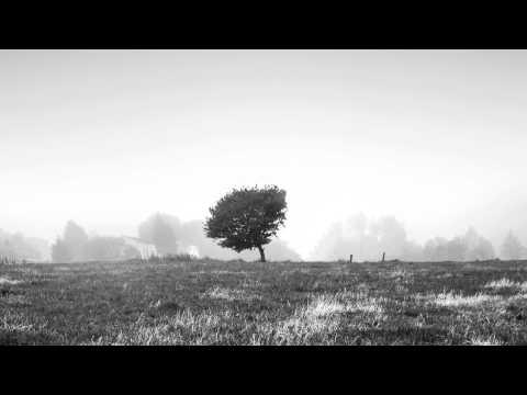 David Boomah - The Awakening (Von D Remix)