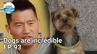 Dogs are incredible EP.93 | KBS WORLD TV 210922