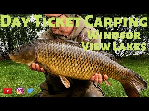 Day Ticket Carping.  Windsor View Lakes