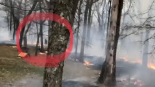 Giant CREATURE Caught on VIDEO! IT'S RUNNING THROUGH FIRE!