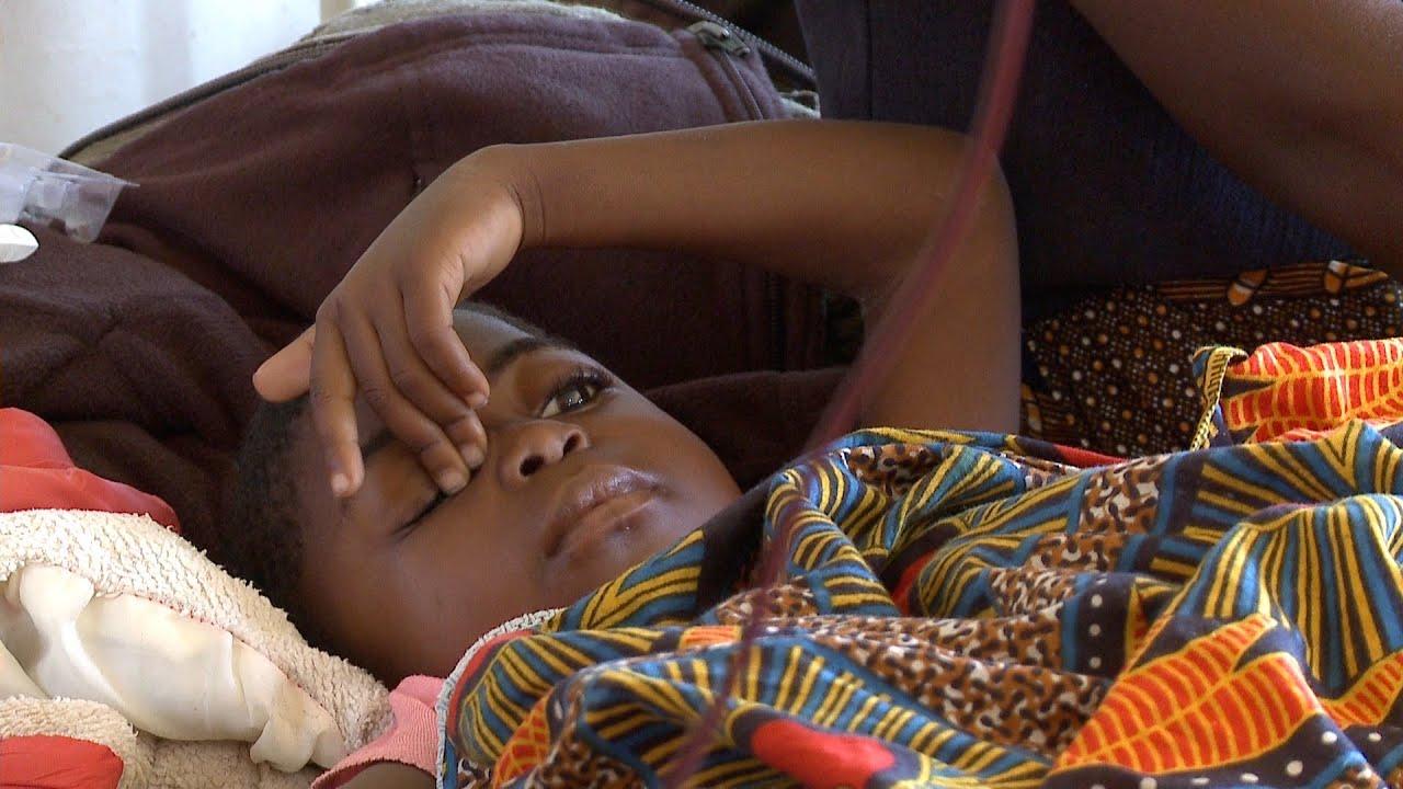 Download Malaria eradication: what we need to do.