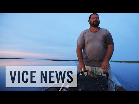 Louisiana's Disappearing Island (Excerpt from 'Oil and Water')