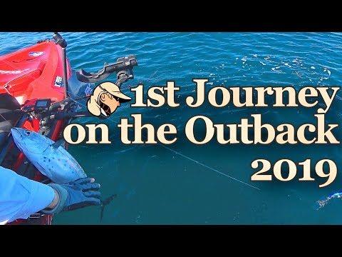 A 1ª Jornada De Pesca -  Estreia Do Hobie Outback 2019 -  Kayak Fishing - 4K