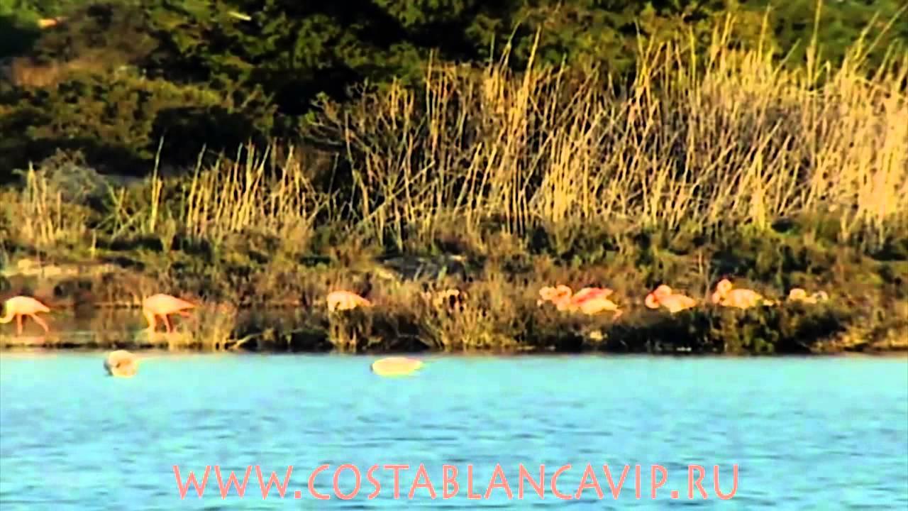 Озера в аликанте