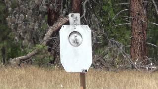 rogue shooting targets   ar500 idpa a zone silhouette target