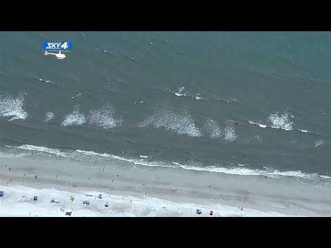 Florida News - Sixteen-Year-Old Bitten By Shark In Atlantic Ocean