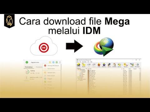 Cara download file Mega melalui IDM - YouTube