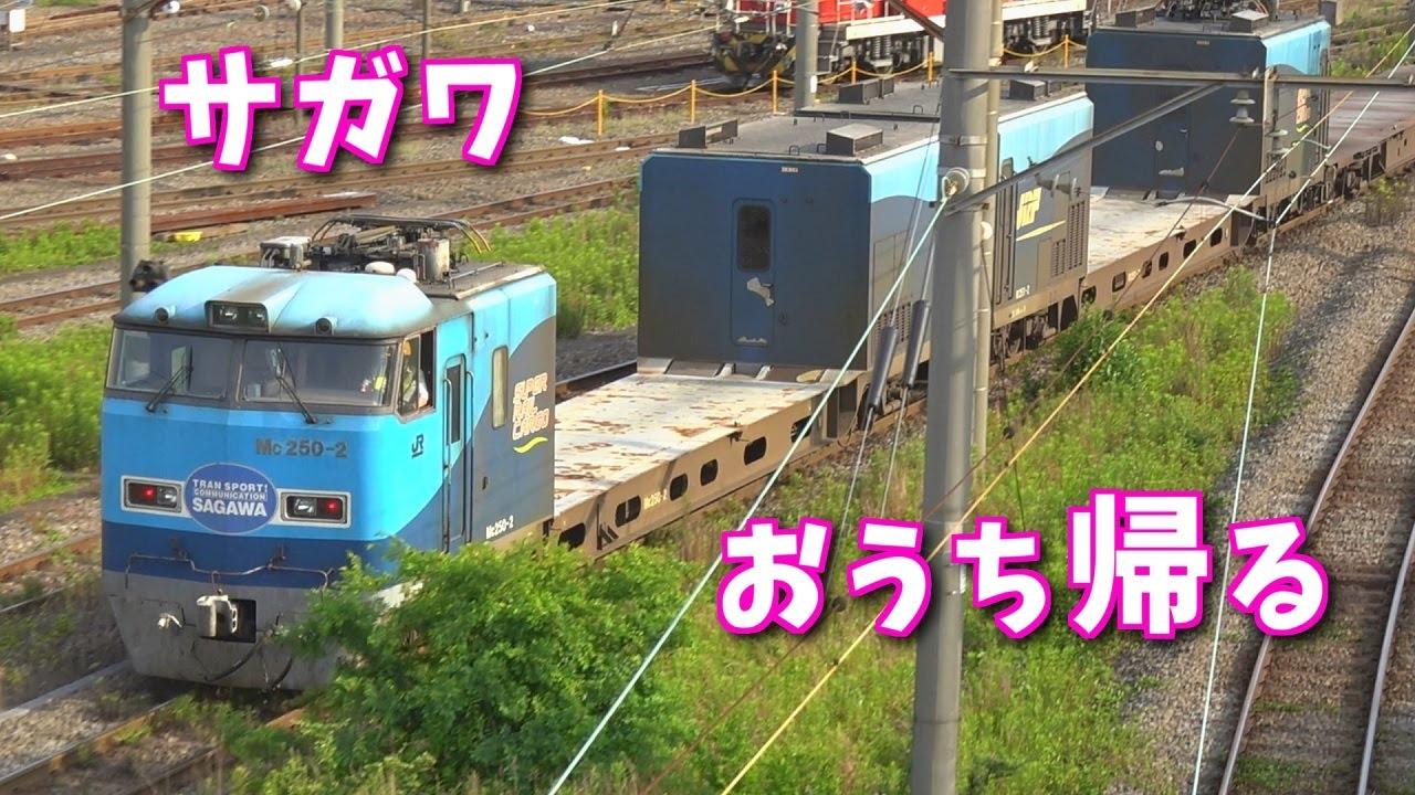 大手運送会社の専用列車が東京に到着!早朝の貨物ターミナル【スーパーレールカーゴ】【東京貨物ターミナル駅】