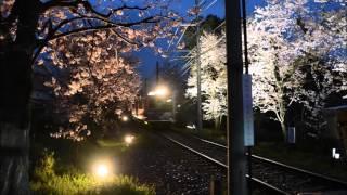 画像は、京福電気鉄道北野線桜のトンネルを参照 For photos of the tunnel, see the article on the Cherry Tunnel of the Kitano Line of the Keifuku Electric Railroad.