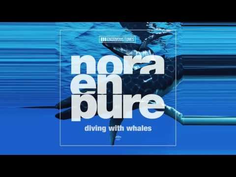 Nora En Pure – Diving with Whales