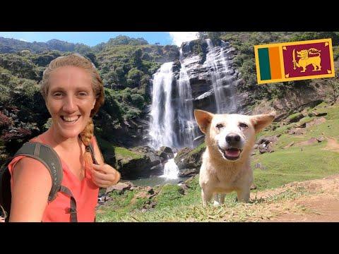 BEST of Nuwara Eliya in 48 HOURS [Sri Lanka Travel Vlog]