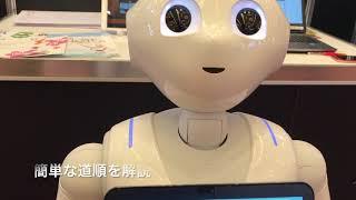 JR東日本が東京駅の案内にPepper導入、システナが開発 thumbnail