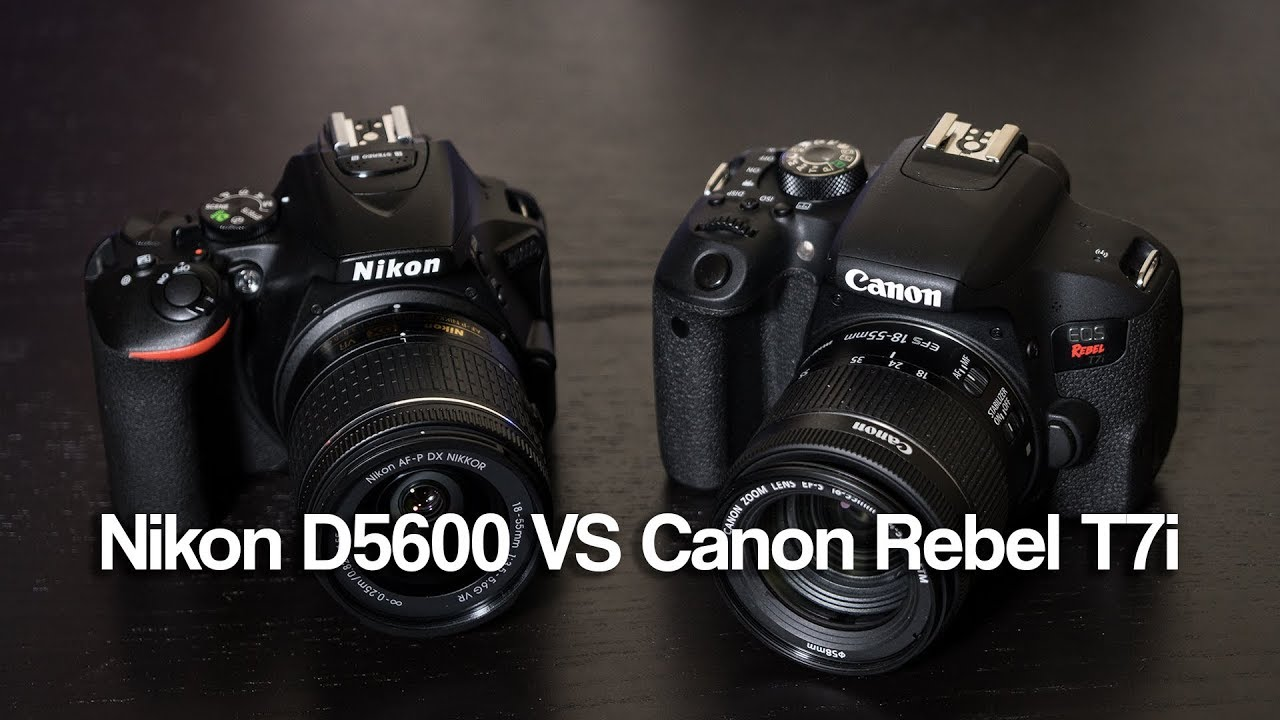 Nikon D5600 VS Canon Rebel T7i (800D) Which is Better?