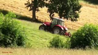 Mowing for Silage with TWO Masseys in the Frame!