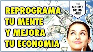 Reprogramacion de la Economia - Atrae Abundancia, Riqueza y ...