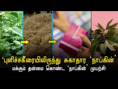 a-new-initiative-by-the-youngsters-biodegradable-organic-napkins-hindu-tamil-thiai