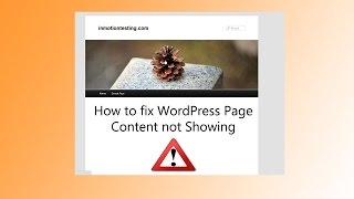How to Fix Wordpress Page Content Not Showing