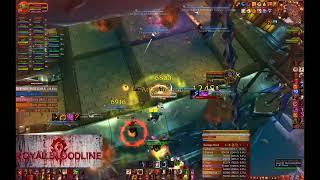 warmane   guild royal bloodline icc 25 hc full run feral druid pov