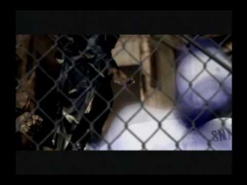 Bone Thugs N Harmony - Tha Crossroads (Official video)
