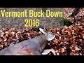 Vermont bucks down 2016