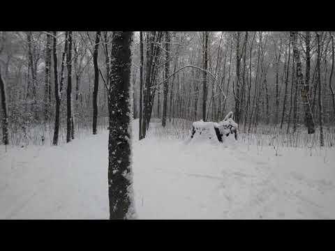 Арзамас, зима, парк