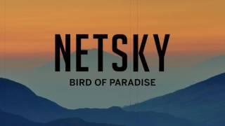 Play Bird of Paradise