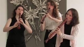 Joseph Bodin de Boismortier - Concerto Op. 15, no. III: I. Allegro