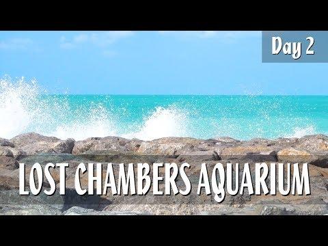 LOST CHAMBERS AQUARIUM – Dubai Vlog – Day 2