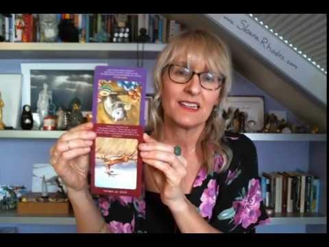 Virgo Life Purpose, Money & Career October, November, December 2017 Tarot Reading by Sloane Rhodes