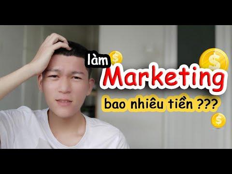 nghề marketing và cơ hội việc làm| Người yêu mới