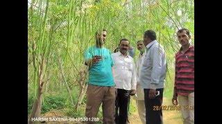 Visit to Drumstick farm in Nasik District......