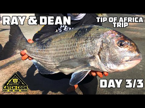 Musselcracker Off The Rocks | Ray & Dean - DAY 3/3 [CATCH COOK] Tip Of Africa, South Africa