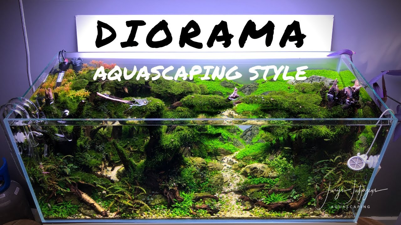 Diorama Aquascaping Style Best For Iaplc Youtube